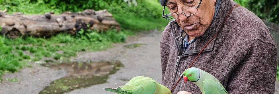 ORIGINAL PHOTO Parakeet Whisperer by Shenan Chandler
