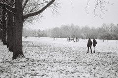 Winter Walk by Gareth Sell