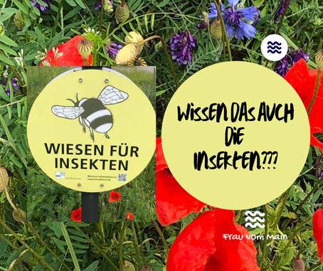 Schilderwald - jetzt auch im Wald und an der Wiese!