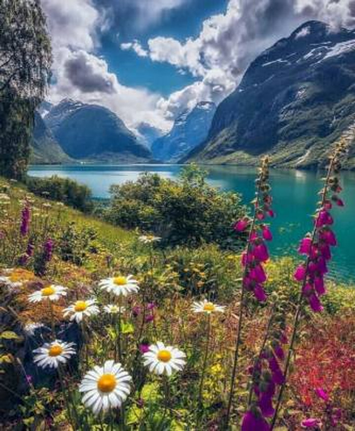 5749600-beautiful-nature