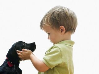 Çocuğunuzun sahi duygusallığa ihtiyacı vardır, mükemmeliyetçiliğe değil!