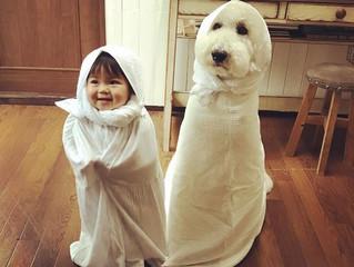 Çocuğumu mutlu bir birey olarak nasıl yetiştirebilirim? Bir kaç küçük ipucu..