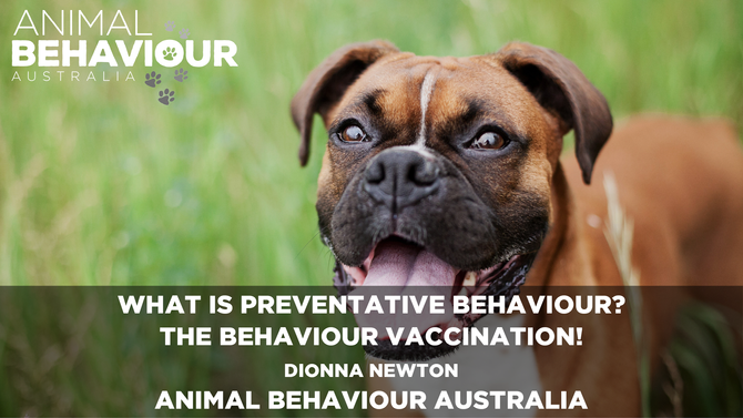 What Is Preventative Behaviour? The Behaviour Vaccination