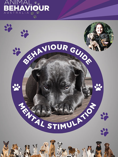 Behaviour Guide - Mental Stimulation - Exercise for the Brain