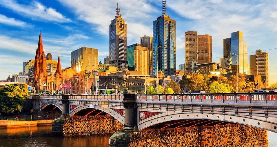 Dog Behaviourist Melbourne.jpg