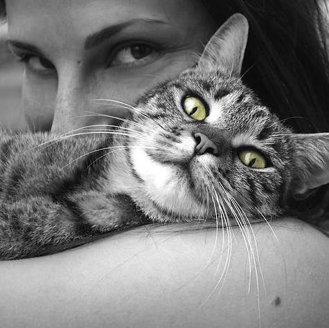 Animal Behaviourist.jpeg