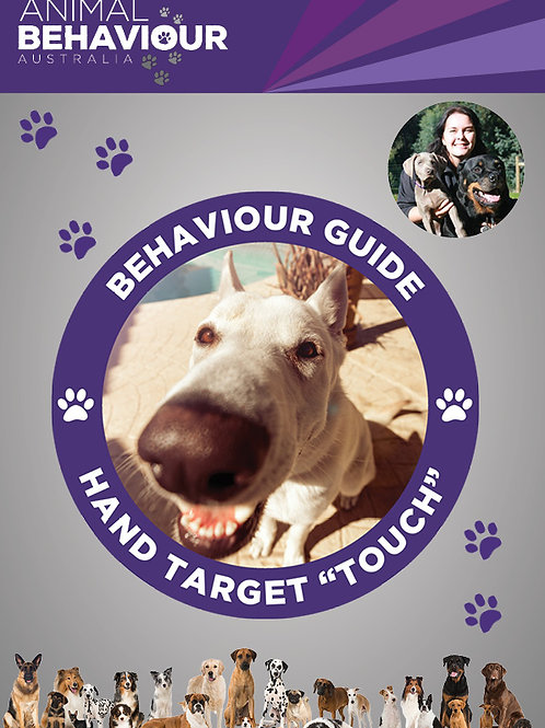 """Behaviour Guide - Hand Target or """"Touch"""""""