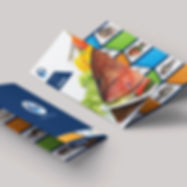 Brochure-Design-Services-Seafood.jpg