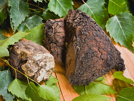 Chaga Creams, Lotions & Herbal Baths and Beard Oil: What are the Benefits of Chaga Skincare Products