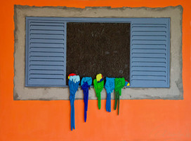 Araras na janela - 2020 sambo©