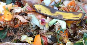 #Toutsavoir : le compost en ville