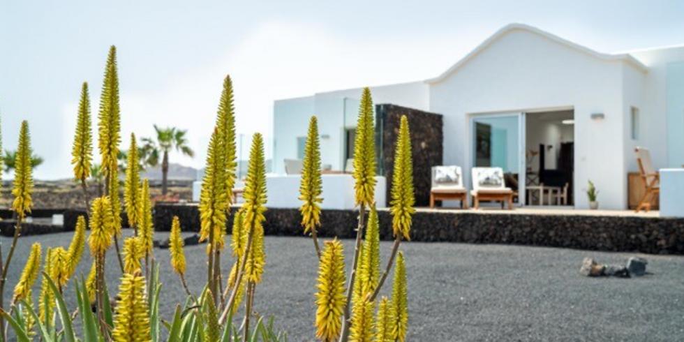 Yoga and Sun in Lanzarote