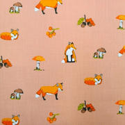 exploring foxes - coral