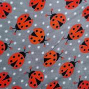 ladybirds - grey