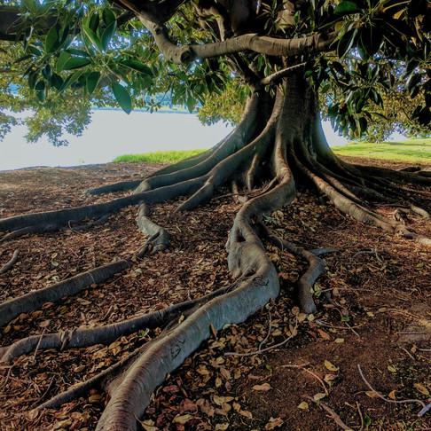 How to Spiritually Ground Yourself