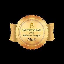 3merit-fotograf--2018.png