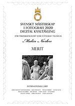 diplom-digital-2089.jpg