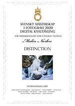 diplom-digital-2051.jpg