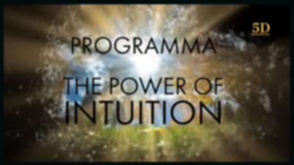 online programma 1.png