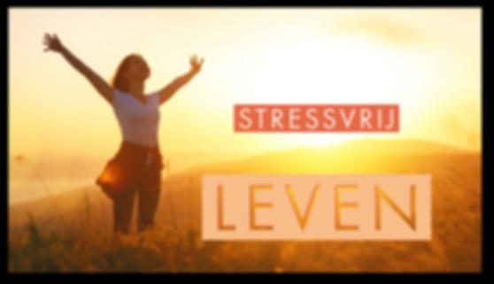 stressvrij leven website.png