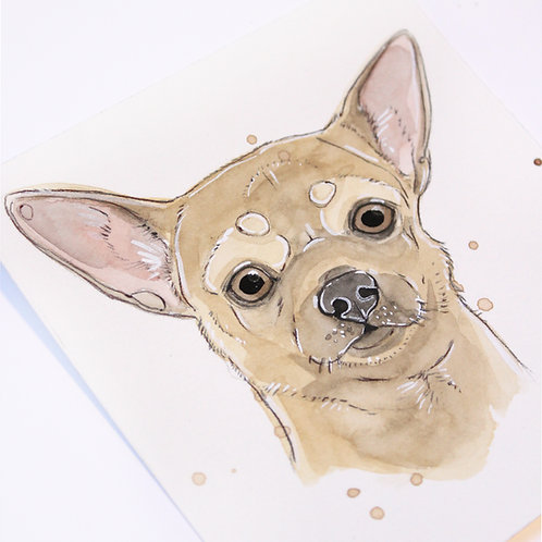 MINI AQUARELLE -Chihuahua