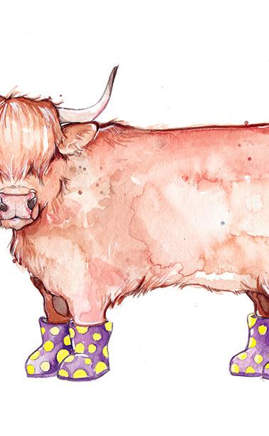 La Vache Highland à Bottes
