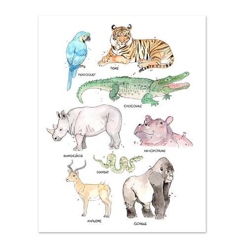 Les Animaux de la Jungle - Affiche