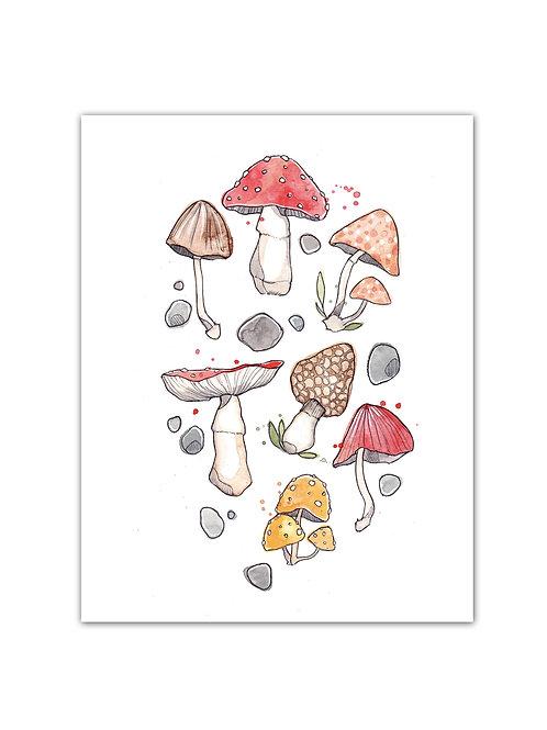 Les Champignons - Affiche