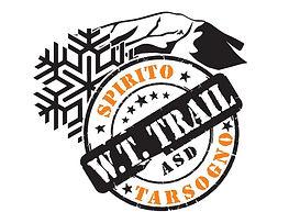 wtt logo.jpeg