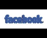 facebook-wordmark-1024x819 1.png
