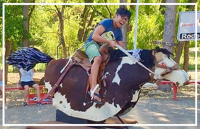 Rodeo Zone Birthday Party / Mechanical Horse