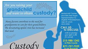 Senior Law Custody Cap Image.jpg