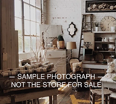 Profitable Antiques Consignment Store