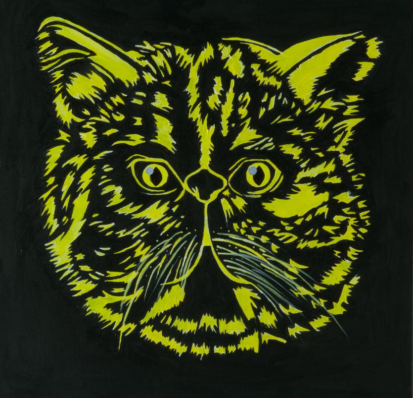 Goya's Cat