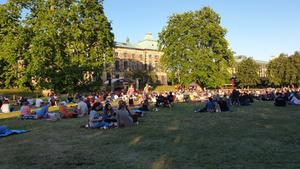 PalaisSommer 2020 Bild ©: Redaktion Lust auf Dresden