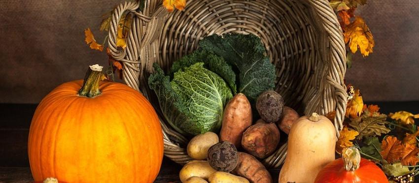 Traditioneller Herbst-Bauernmarkt in Altkötzschenbroda