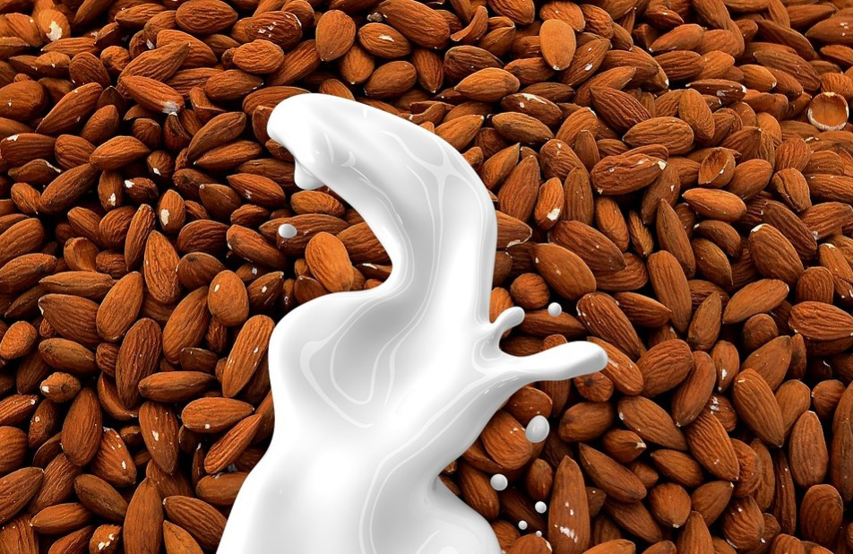 Lactosefreie Mandel - Milch - selbst hergestellt