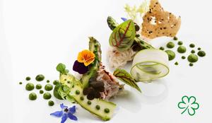 Ab sofort zeichnet Michelin Restaurants mit besonders nachhaltiger Küche mit einem grünen Kleeblatt aus (hier Symbolbild). (Foto: © Troyce Hoffman/stock.adobe.com; Michelin)