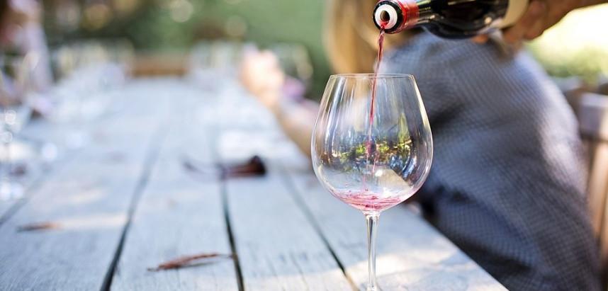 Große Weinverkostung mit 8 Weinen - vom Winzer moderierte sächsische Weinprobe