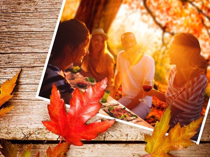 Indian Summer - Das Gourmetpicknick im Schlossgarten