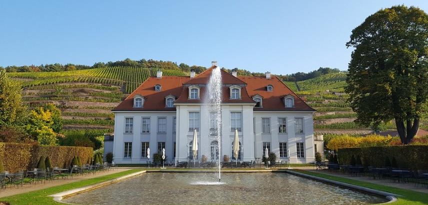 Weinbergswanderung auf Schloss Wackerbarth