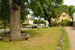 Lindenschaenke1