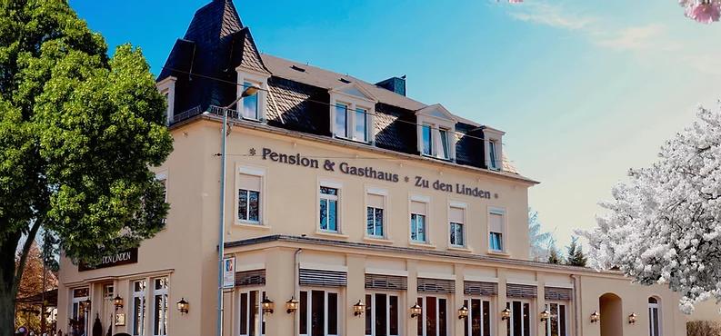 """Gasthaus & Pension""""ZU DEN LINDEN"""" RADEBEUL , Nachrichten,Panorama,News, was ist los in Dresden und Umgebung, wohin in Dresden und Umgebung,Gänsebraten,Martinsgans,Radebeul"""