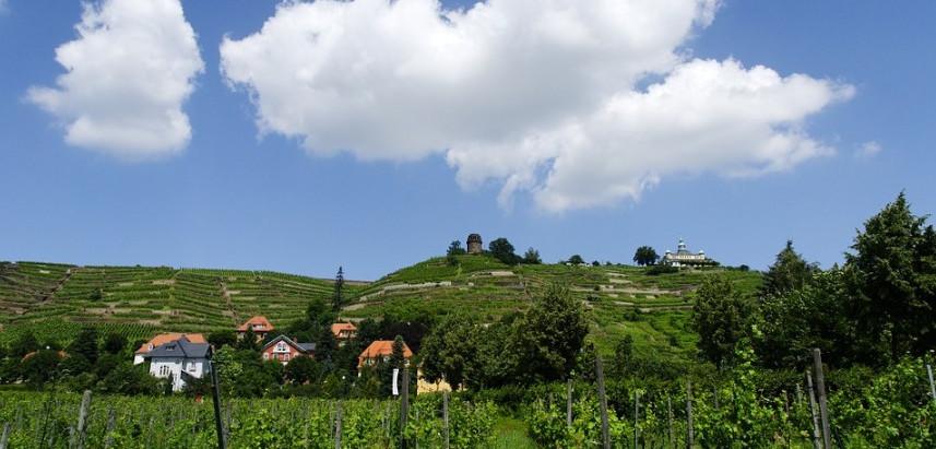 Weinherbst mit Wandertheater und Musik in der Hoflößnitz