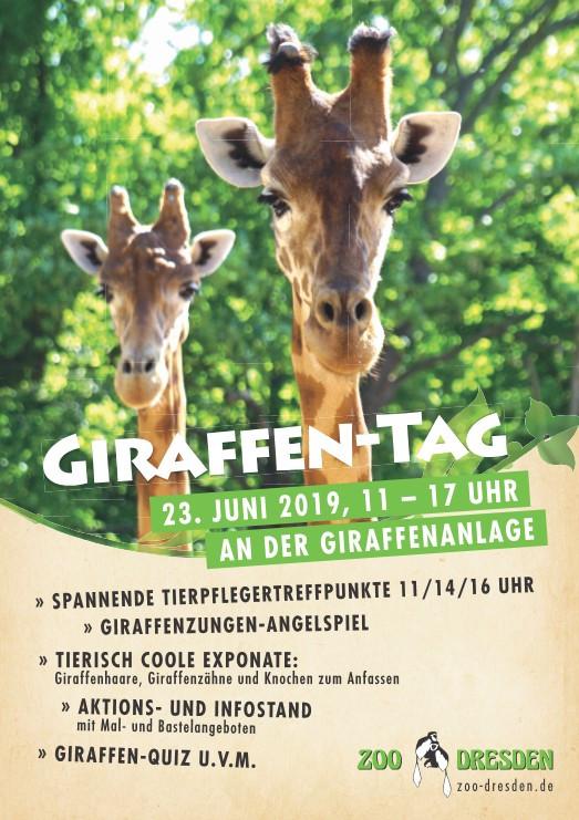 Giraffen-Aktionstag im Zoo Dresden