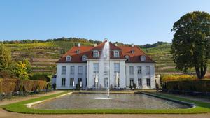 Was ist los in Dresden und Umgebung Wohin in Dresden und Umgebung Radebeul Schloss  Wackerbarth