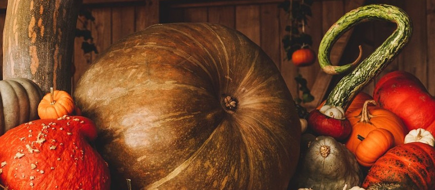 Landeshauptstadt sagt Dresdner Herbstmarkt ab