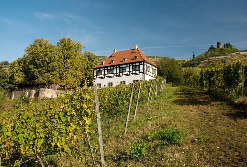 Lust auf Sachsen - Bildquelle: http://www.hofloessnitz.de/templates/pics/startseite_background.jpg