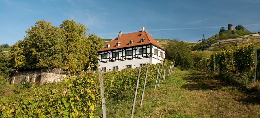 Veranstaltungen in der Hoflößnitz Oktober 2020