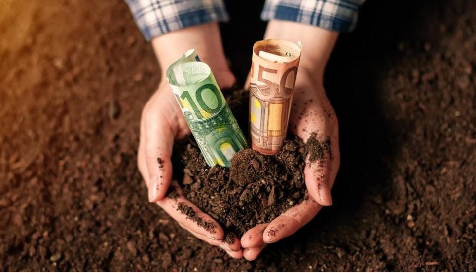 Vom Ernährungsministerium werden von nun an Darlehen in Höhe von maximal drei Millionen Euro angeboten. (© Bits and Splits/stock.adobe.com)